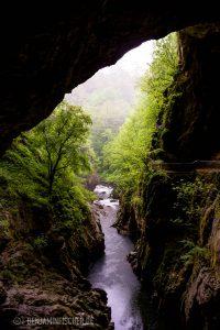 Die Reka fließt in die Höhlen von ŠŠkocjan